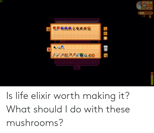 Is Life: Is life elixir worth making it? What should I do with these mushrooms?