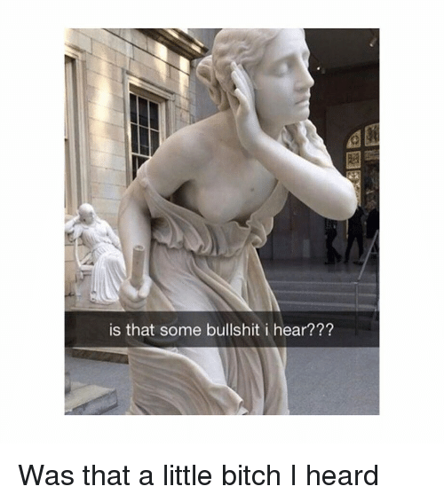 Bitch, Classical Art, and Bullshit: is that some bullshit i hear??? Was that a little bitch I heard