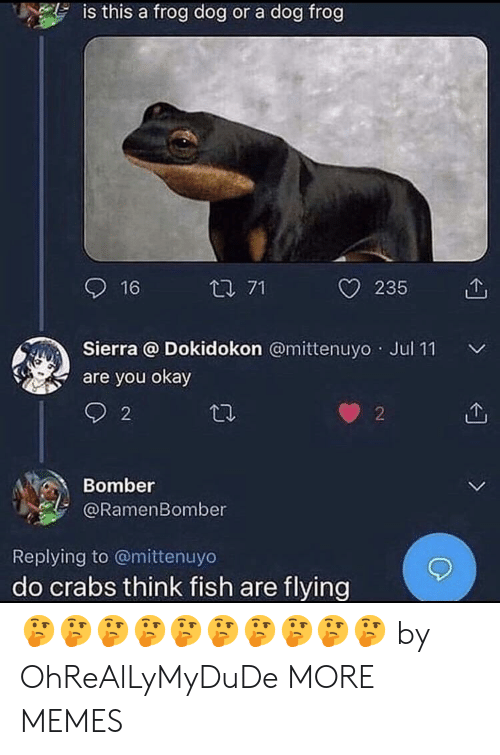 Dank, Memes, and Target: is this a frog dog or a dog frog  16  t 71  O 235 1  Sierra @ Dokidokon @mittenuyo Jul 11  are you okay  2  2  Bomber  @RamenBomber  Replying to @mittenuyo  do crabs think fish are flying 🤔🤔🤔🤔🤔🤔🤔🤔🤔🤔 by OhReAlLyMyDuDe MORE MEMES