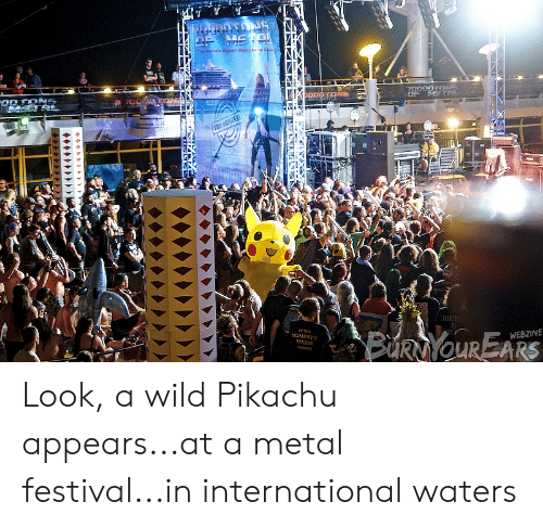 Pikachu, Wild, and Festival: IS  WEBZINE  OMENTS  WARM Look, a wild Pikachu appears...at a metal festival...in international waters