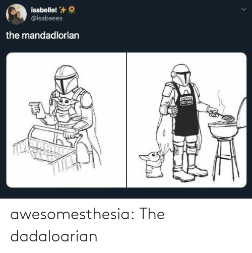 caution: isabelle! +O  @isabeees  the mandadlorian  CAUTION  HOT DAD awesomesthesia:  The dadaloarian