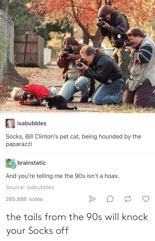 paparazzi: isabubbles  Socks, Bill Clinton's pet cat, being hounded by the  paparazzi  brainstatic  And you're telling me the 90s isn't a hoax.  Source: isabubbles  285,888 notes the tails from the 90s will knock your Socks off