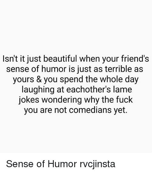 Fuck You, Memes, and 🤖: Isn't it just beautiful when your friend's  sense of humor is just as terrible as  yours & you spend the whole day  laughing at eachother's lame  jokes wondering why the fuck  you are not comedians yet. Sense of Humor rvcjinsta