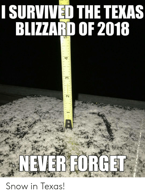 Neverforget: ISURVIVED THE TEKAS  BLIZZARD OF 2018  0.3  CV  NEVERFORGET Snow in Texas!