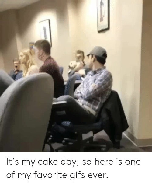 Cake, Gifs, and One: It's my cake day, so here is one of my favorite gifs ever.