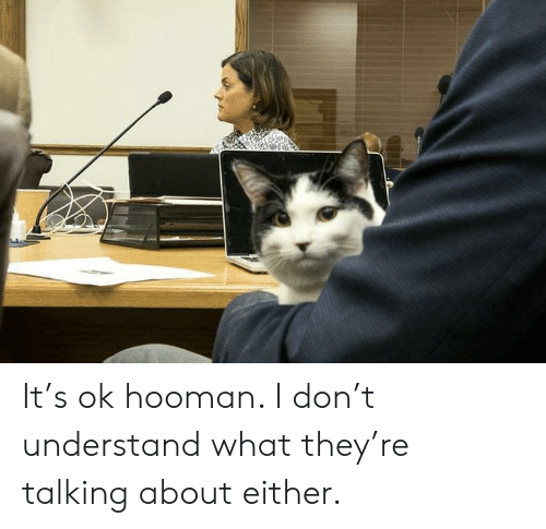 Dank, 🤖, and Don: It's ok hooman. I don't understand what they're talking about either.