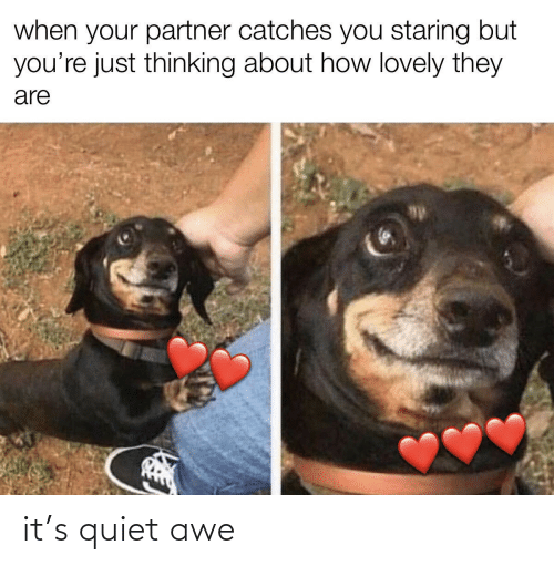 awe: it's quiet awe