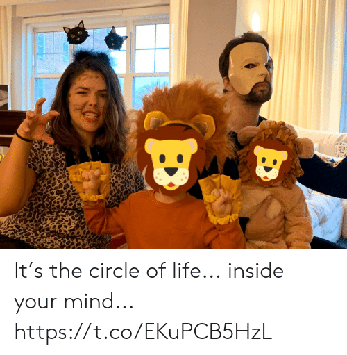 Life, Memes, and Mind: It's the circle of life... inside your mind... https://t.co/EKuPCB5HzL