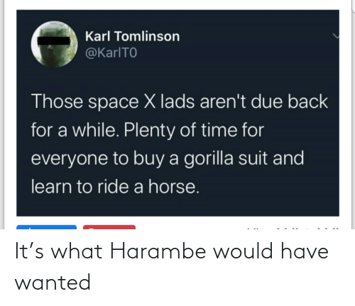 wanted: It's what Harambe would have wanted