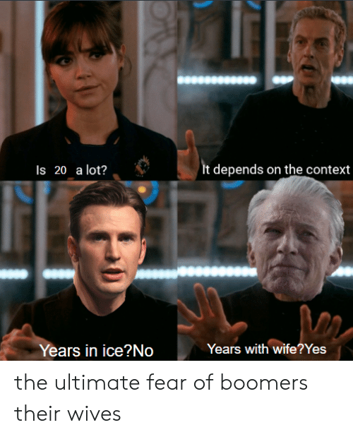 Reddit, Wife, and Fear: It depends on the context  Is 20 a lot?  Years with wife??Yes  Years in ice?No the ultimate fear of boomers their wives