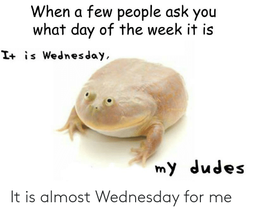 Wednesday: It is almost Wednesday for me