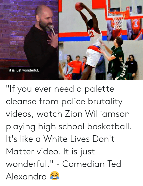 "palette: it is just wonderful ""If you ever need a palette cleanse from police brutality videos, watch Zion Williamson playing high school basketball. It's like a White Lives Don't Matter video. It is just wonderful.""   - Comedian Ted Alexandro 😂"