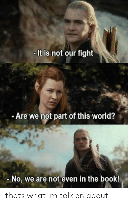 Book, World, and Fight: It is not our fight  Are we not part of this world?  No, we are not even in the book! thats what im tolkien about