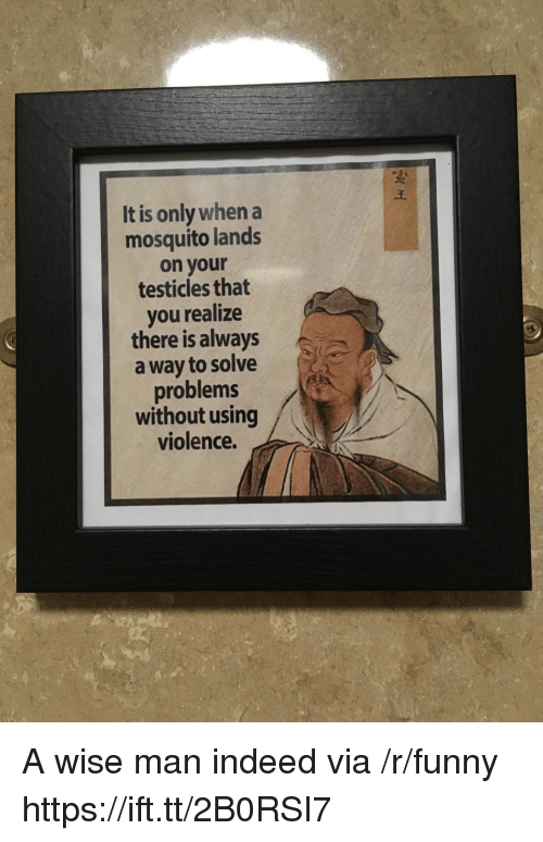 Funny, Indeed, and Mosquito: It is only when a  mosquito lands  on your  testicles that  you realize  there is always  a way to solve  problems  without using  violence. A wise man indeed via /r/funny https://ift.tt/2B0RSI7