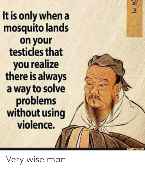 testicles: It is only when a  mosquito lands  on your  testicles that  you realze  there is always  a way to solve  problems  without using  violence.  ifunny.ce Very wise man