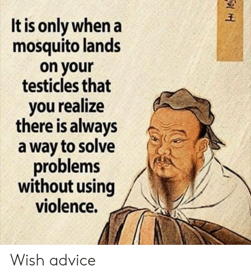 testicles: It is only when a  mosquito lands  on your  testicles that  you realize  there is always  a way to solve  problems  without using  violence. Wish advice
