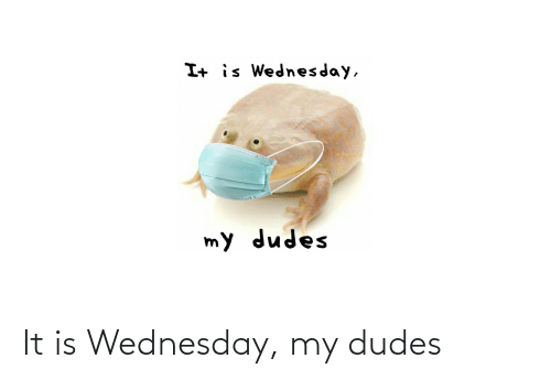Wednesday: It is Wednesday, my dudes