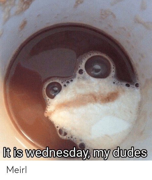 Is Wednesday: It is wednesday, my dudes Meirl