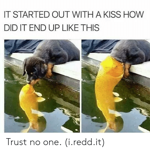 It Started Out With A Kiss: IT STARTED OUT WITH A KISS HOW  DID IT END UP LIKE THIS Trust no one. (i.redd.it)