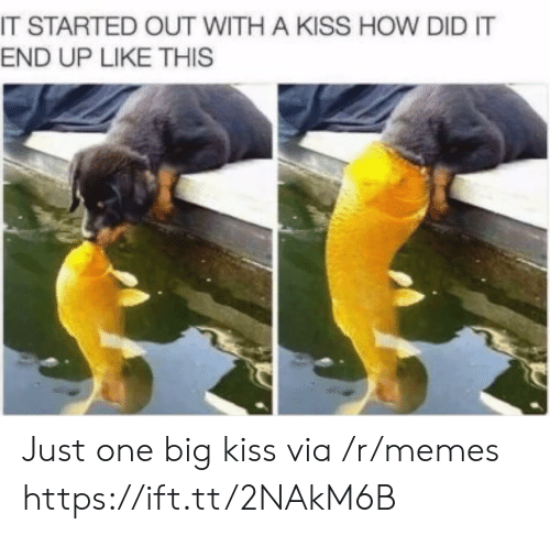 It Started Out With A Kiss: IT STARTED OUT WITH A KISS HOW DID IT  END UP LIKE THIS Just one big kiss via /r/memes https://ift.tt/2NAkM6B