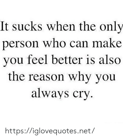 It Sucks: It sucks when the only  erson who can make  you feel better is also  the reason why you  always cry https://iglovequotes.net/