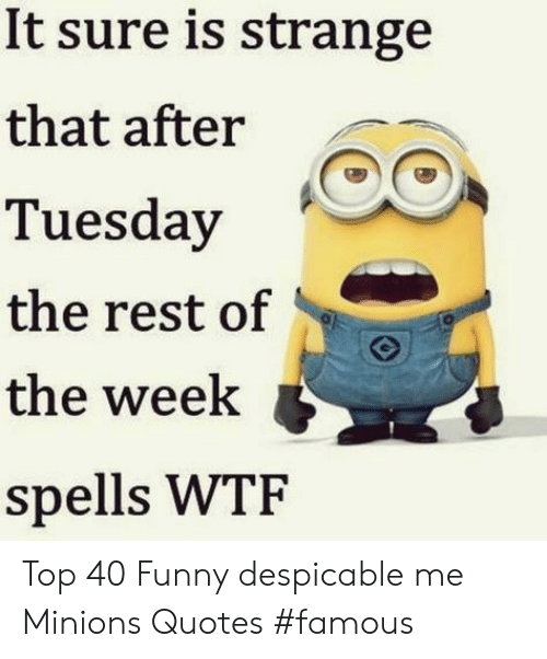 Despicable Me: It sure is strange  that after  Tuesday  the rest of  the week  spells WTF Top 40 Funny despicable me Minions Quotes #famous