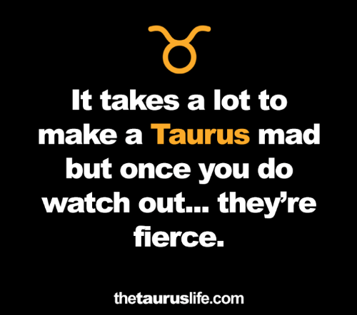 Taurus: It takes a lot to  make a Taurus mad  but once you do  watch out... they're  fierce.  thetauruslife.com