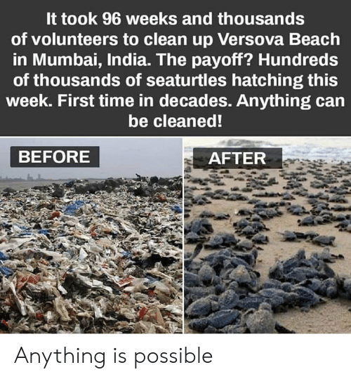 before after: It took 96 weeks and thousands  of volunteers to clean up Versova Beach  in Mumbai, India. The payoff? Hundreds  of thousands of seaturtles hatching this  week. First time in decades. Anything can  be cleaned!  BEFORE  AFTER Anything is possible