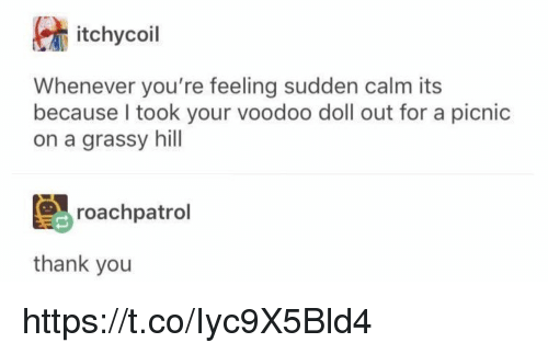 Memes, Thank You, and 🤖: itchycoil  Whenever you're feeling sudden calm its  because I took your voodoo doll out for a picnic  on a grassy hill  roachpatrol  thank you https://t.co/Iyc9X5Bld4