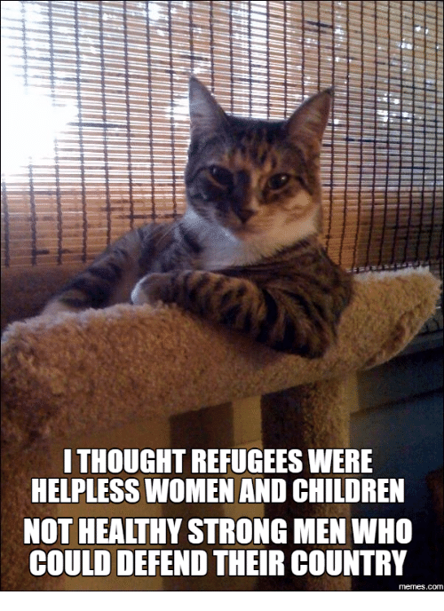 Country Memes: ITHOUGHTREFUGEESWERE  HELPLESS WOMEN AND CHILDREN  NOT HEALTHY STRONG MEN WHO  COULD DEFEND THEIR COUNTRY  memes.com