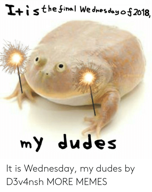 it is wednesday my dudes: Iti s thefinal Wednesday 012018,  my dudes It is Wednesday, my dudes by D3v4nsh MORE MEMES