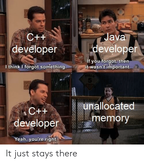 Yeah, Java, and Memory: itriG  Java  C++  developer  developer  if you forgot, then  it wasn't important  I think I forgot something  5  unallocated  C++  memory  developer  Yeah, you're right It just stays there