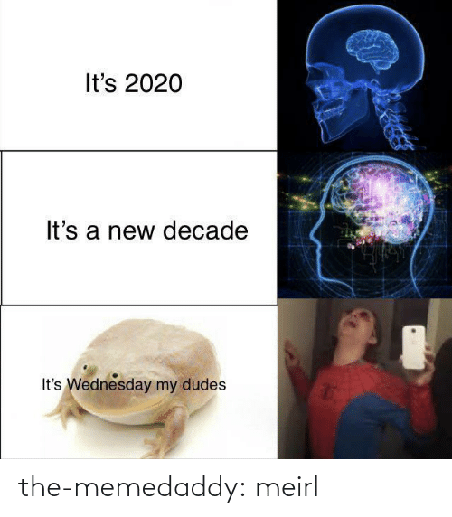 My Dudes: It's 2020  It's a new decade  It's Wednesday my dudes the-memedaddy:  meirl