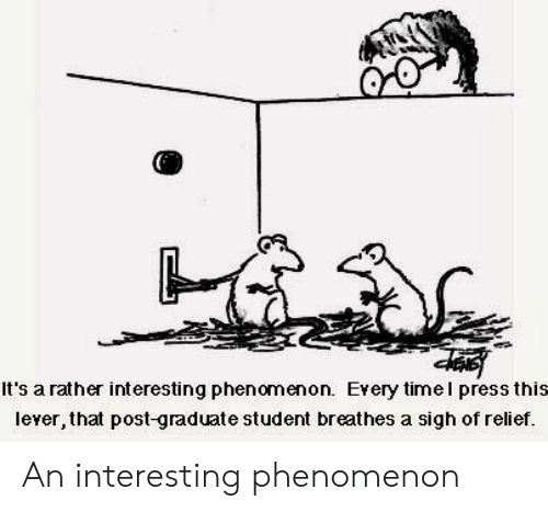 Phenomenon, Student, and Post: It's a rather interesting phenomenon. Every timel press this  lever, that post-graduate student breathes a sigh of relief. An interesting phenomenon