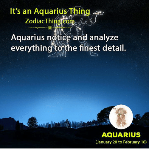 Aquarius, Zodiac, and Com: It's an Aquarius Thing  Zodiac Thing.com  Aquarius notice and analyze  everything torthe finest detail.  AQUARIUS  (January 20 to February 18)