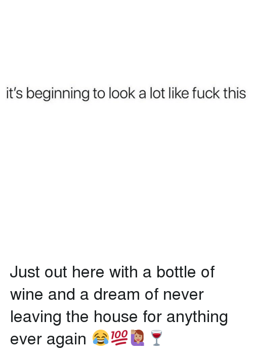 A Dream, Memes, and Wine: it's beginning to look a lot like fuck this Just out here with a bottle of wine and a dream of never leaving the house for anything ever again 😂💯🙋🏽‍♀️🍷