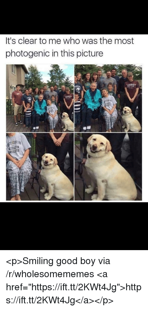 """Good, Boy, and Who: It's clear to me who was the most  photogenic in this picture  ES <p>Smiling good boy via /r/wholesomememes <a href=""""https://ift.tt/2KWt4Jg"""">https://ift.tt/2KWt4Jg</a></p>"""