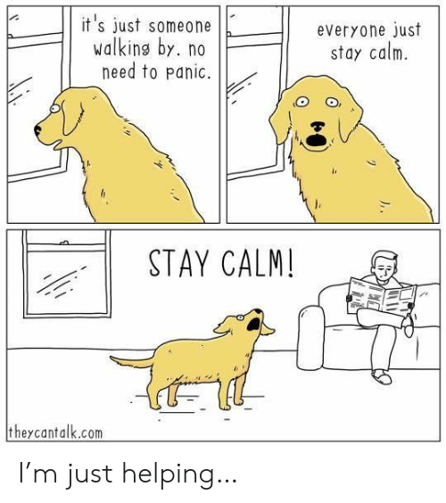 No Need To: it's just someone  walking by. no  need to panic.  everyone just  stay calm  STAY CALM!  theycantalk.com I'm just helping…