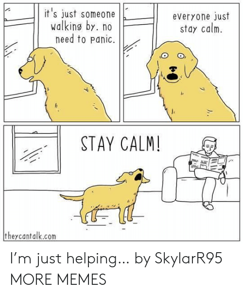 No Need To: it's just someone  walking by. no  need to panic.  everyone just  stay calm  STAY CALM!  theycantalk.com I'm just helping… by SkylarR95 MORE MEMES