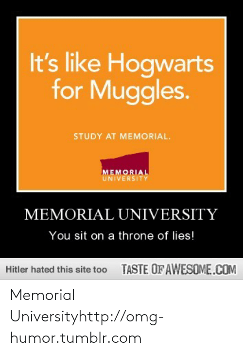 You Sit: It's like Hogwarts  for Muggles.  STUDY AT MEMORIAL.  MEMORIAL  UNIVERSITY  MEMORIAL UNIVERSITY  You sit on a throne of lies!  TASTE OF AWESOME.COM  Hitler hated this site too Memorial Universityhttp://omg-humor.tumblr.com