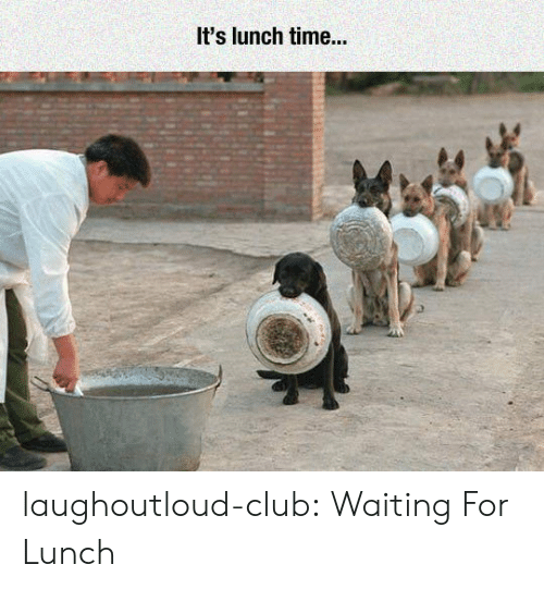 Club, Tumblr, and Blog: It's lunch time... laughoutloud-club:  Waiting For Lunch