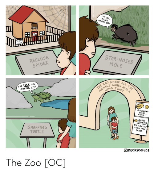 names: IT'S ME,  ACTOR  JOHNNY DEPP.  BEWARE  SPIDER  STAR-NOSED  RECLUSE  SPIDER  MOLE  WHERE  HAVE A  NAMES  TWIST  ALL THE  THE ZO0  ANIMALD  THE FUCK YoU  LOOKING AT!?  ENEW!  BLUE-FOOTED  BOOBY  EXHIBIT!  CLOSED  EXHIBITS  EYE CONTACT  MAULY FACE  BEARS  SNAPPING  TURTLE  OBECKSCOMICS The Zoo [OC]