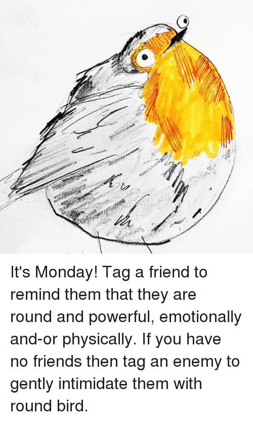 Friends, Memes, and Monday: It's Monday! Tag a friend to remind them that they are round and powerful, emotionally and-or physically. If you have no friends then tag an enemy to gently intimidate them with round bird.