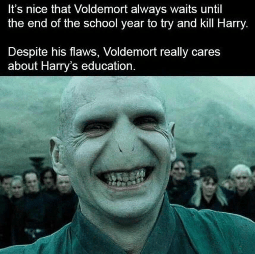 flaws: It's nice that Voldemort always waits until  the end of the school year to try and kill Harry.  Despite his flaws, Voldemort really cares  about Harry's education.