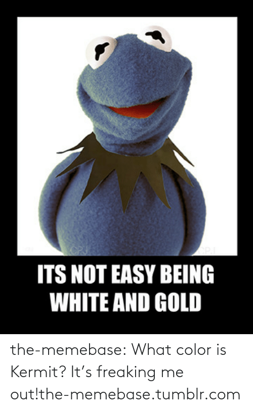 Being White: ITS NOT EASY BEING  WHITE AND GOLD the-memebase:  What color is Kermit? It's freaking me out!the-memebase.tumblr.com