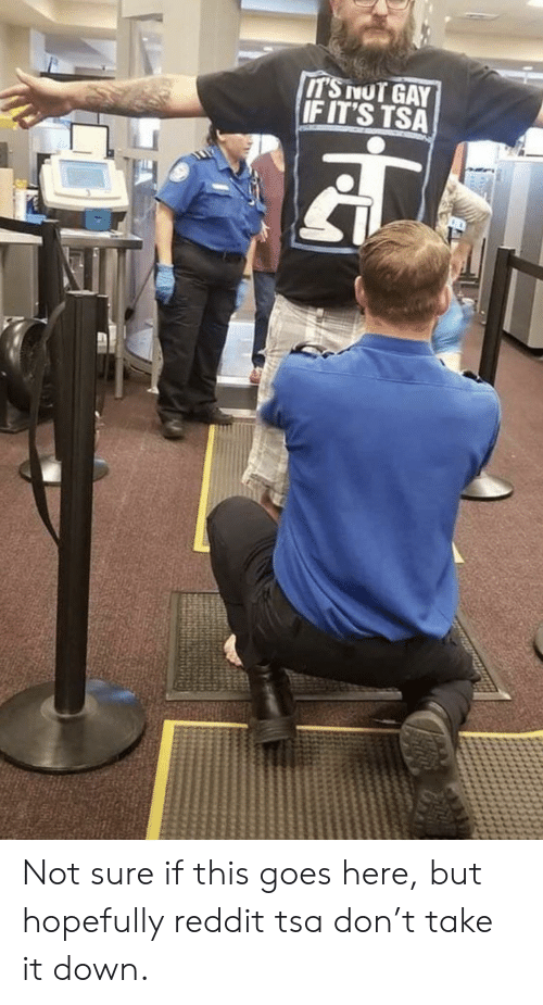 Not Gay: IT'S NOT GAY  IF IT'S TSA Not sure if this goes here, but hopefully reddit tsa don't take it down.