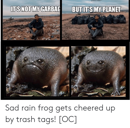 Trash, Rain, and Sad: IT'S NOT MY GARBAG  BUT IT'S MY PLANET Sad rain frog gets cheered up by trash tags! [OC]