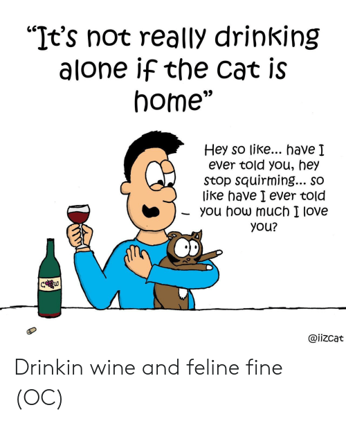 """I Love You: """"It's not really drinking  alone if the cat is  home""""  Hey so like... have I  ever told you, hey  Stop squirming... so  like have I ever told  you how much I love  you?  C w  @iizcat Drinkin wine and feline fine (OC)"""