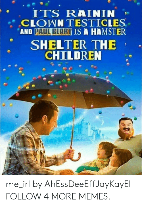testicles: ITS RAININ  CLOWN TESTICLES  AND PAUL BLART IS A HAMSTER  SHELTER THE  CHILDREN me_irl by AhEssDeeEffJayKayEl FOLLOW 4 MORE MEMES.