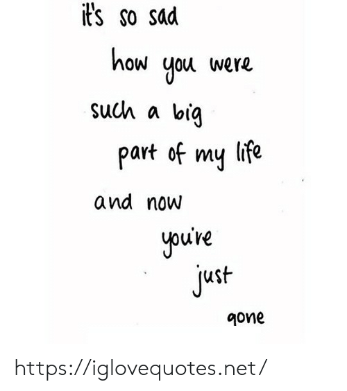 Life, Sad, and How: it's so sad  how  you  were  such a  big  life  part of  my  and now  you're  just  9one https://iglovequotes.net/